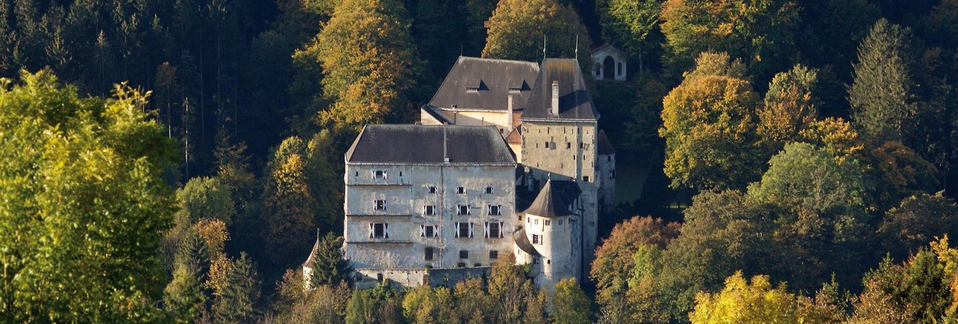 Feistritz Castle