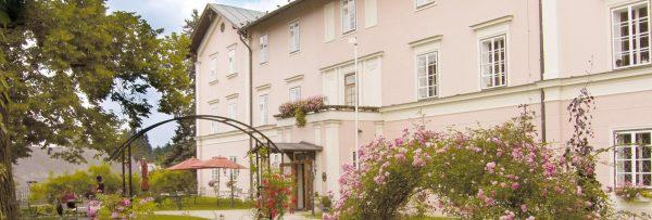 Castle Hotel Zamek Zdikov