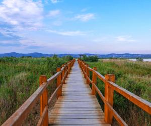 Nature Park Vrana Lake