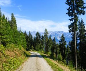 Tauern Cycle Trail